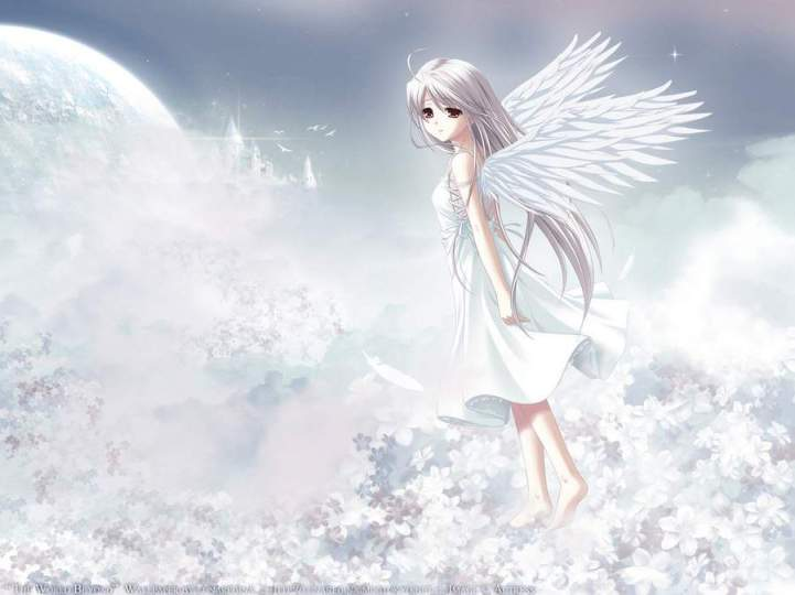 AnimeWhiteAngel
